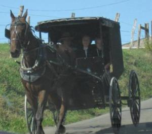 amish-buggy-21411059