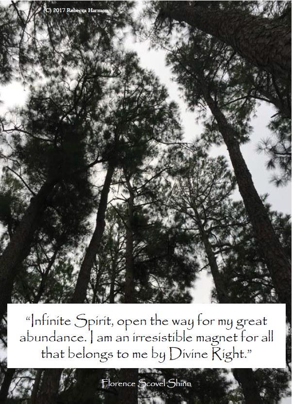 Florence Scovel Shinn Abundance I Am Provided Blessings